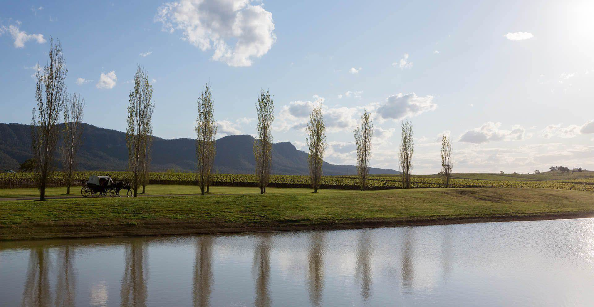 Hunter Valley Photography