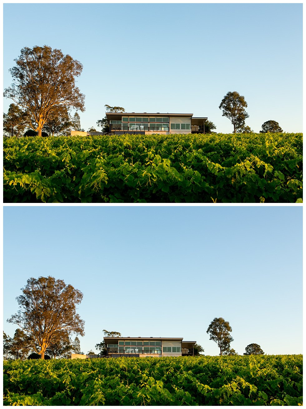 ArtyJ Photography | Lambloch, Wine Bottles, Commercial, Pokolbin, Australia, NSW, Hunter Valley, Photography | Lambloch | Commercial