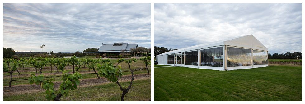 ArtyJ Photography | Website, Commercial, Peterson House, Pokolbin, Australia, NSW, Hunter Valley, Photography | Peterson House | Commercial
