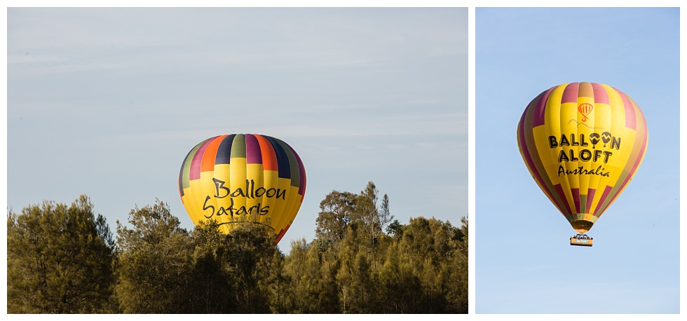 ArtyJ Photography | Adams Peak Country Estate & The Barn, Broke, Spring eShoot, Peterson House, Pokolbin, Australia, NSW, Hunter Valley, eShoot, Engagement, Photography | Rebecca & Alex | eShoot